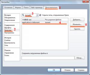 Рис.1. Окно настройки браузера Opera